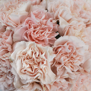 Choosing Seasonal Flowers for your Wedding